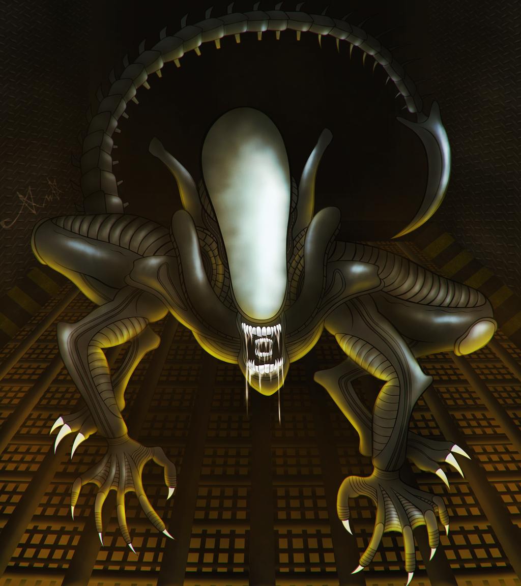 Xenomorph by gagaman92