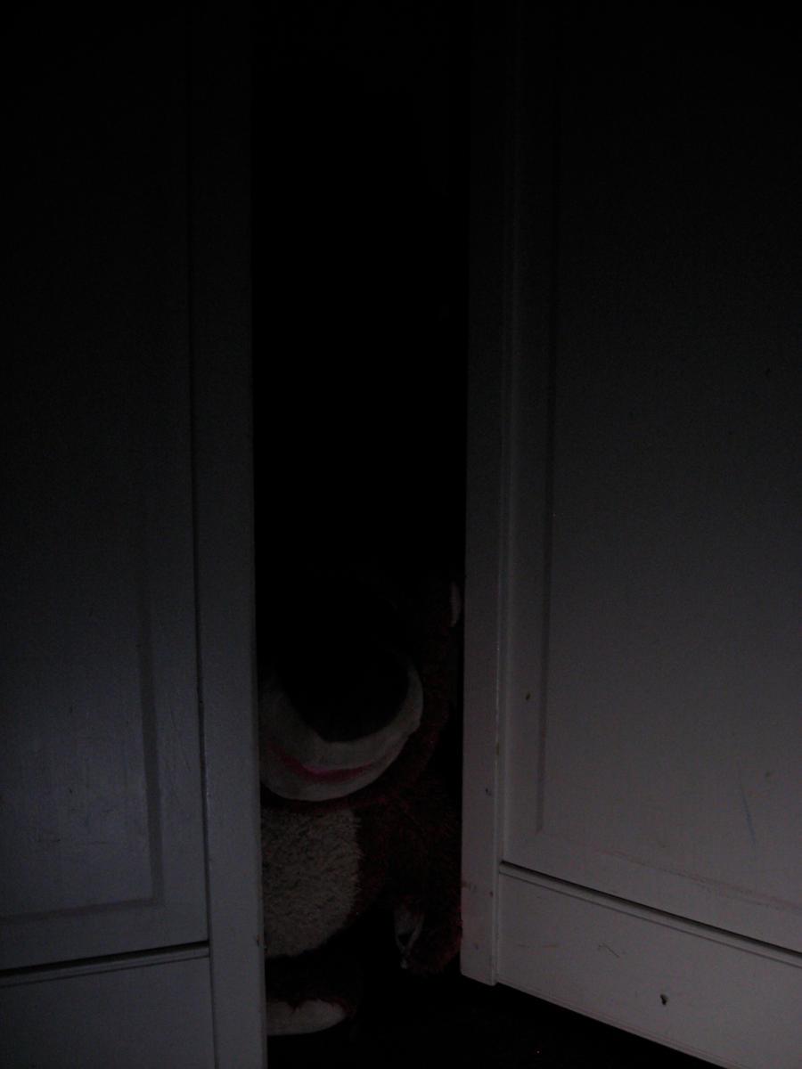 Hidden in my closet