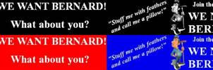We NEED Bernard