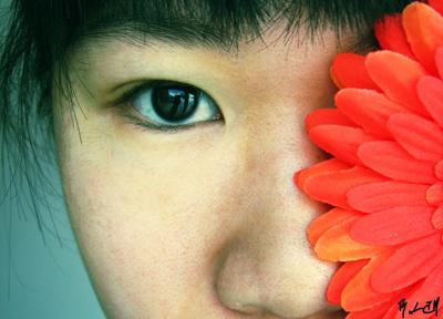 silentglaive's Profile Picture