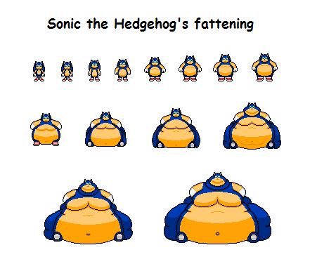 Sonic Fat Shadow Wwwpicturessocom