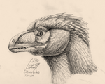 Deinonychus Profile, Close-up