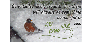 Winter Robin: Go Outside