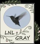 The Original Hummingbird Picture