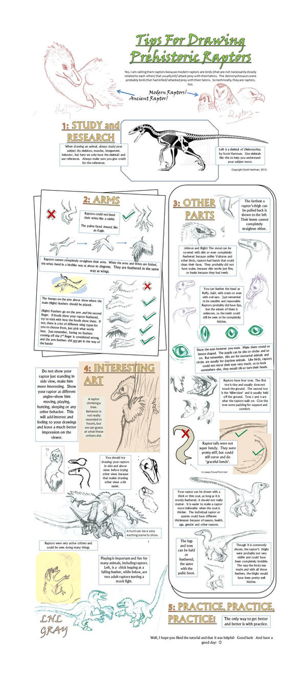 Tips for Drawing Prehistoric Raptors by WhiskerfaceRumpel