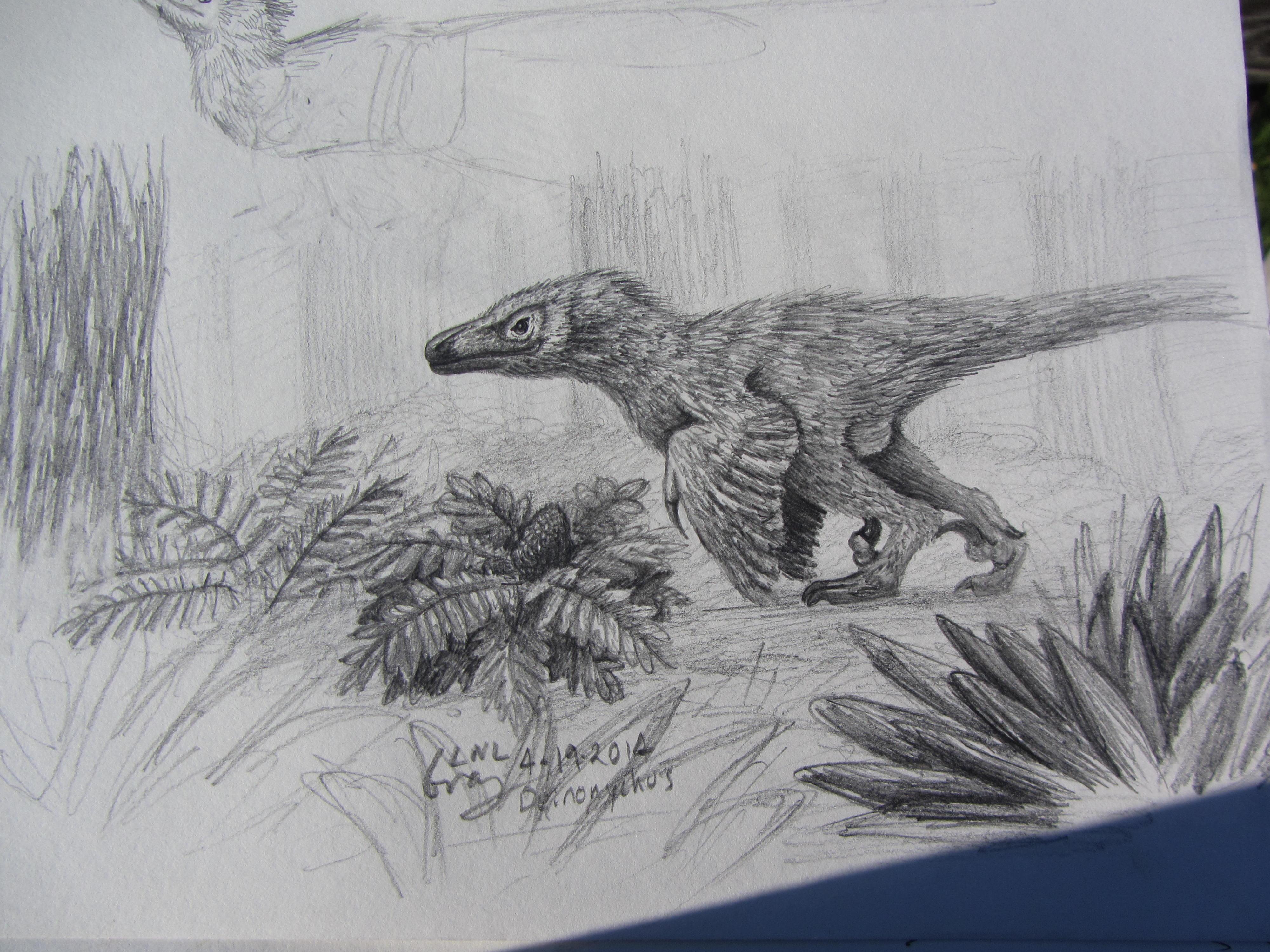 30 Day Dino Challenge: Day 4 - Deinonychus.