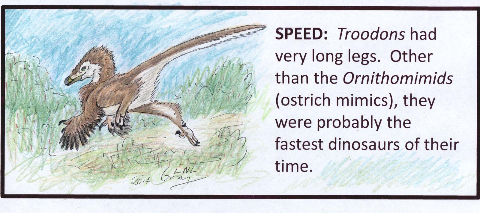 TROODON Project - Speed