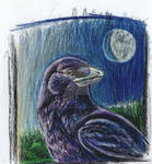 The First Raven