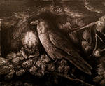 The Light of Raven's Soul