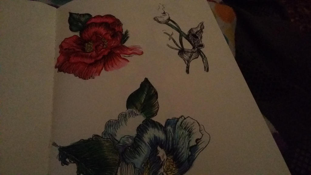 flowers  by NeverShoutPanda