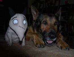 Sparky y Yaco!