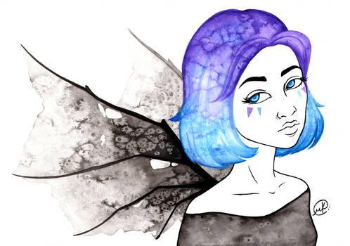 Wings Website
