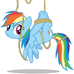 Dash tied up