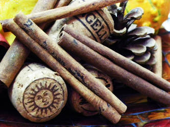 cinnamon 2. by h23b