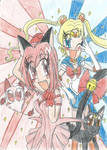 Sailor Moon X Tokyo Mew Mew The Best Magical Girls