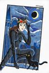 Batman 80th - Catwoman