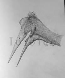 Quetzalcoatlus by Ioioiee