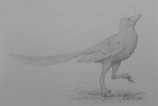 Overoraptor