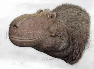 Nanuqsaurus Colored