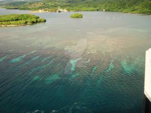 Coral Isla Roaton
