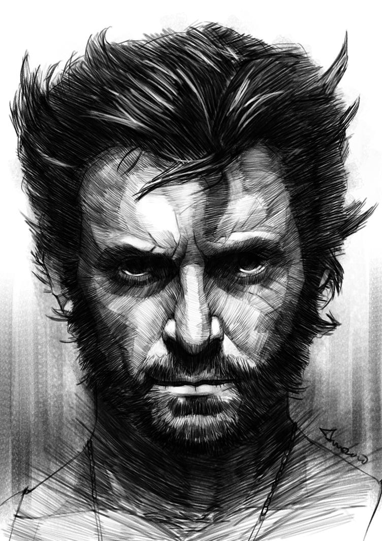 Wolverine by novicekid