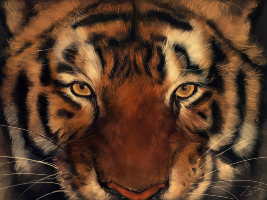 Life Of Pi Quotes I Love You Richard Parker : Richard Parker by novicekid on DeviantArt