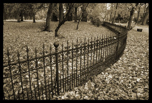 the fence by Sepia-Club