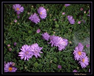 Violet dance by FlowerLisa