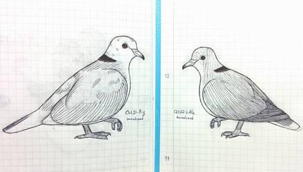 Inktober Birds