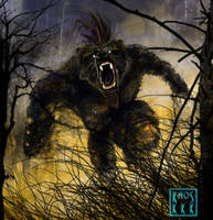 Werebear by ridvan