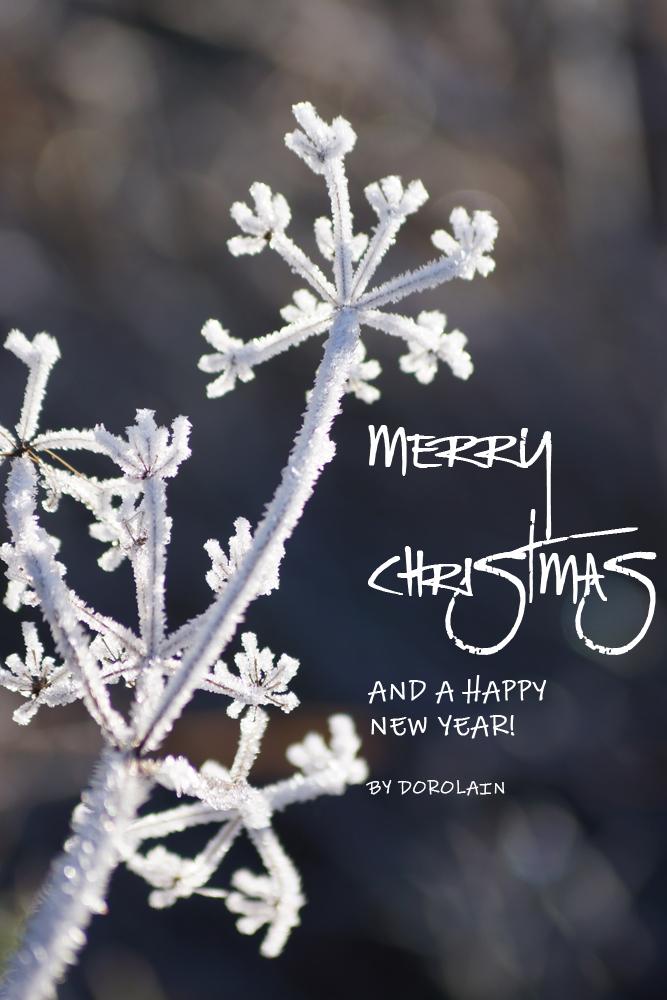Merry Christmas.. by dorolain