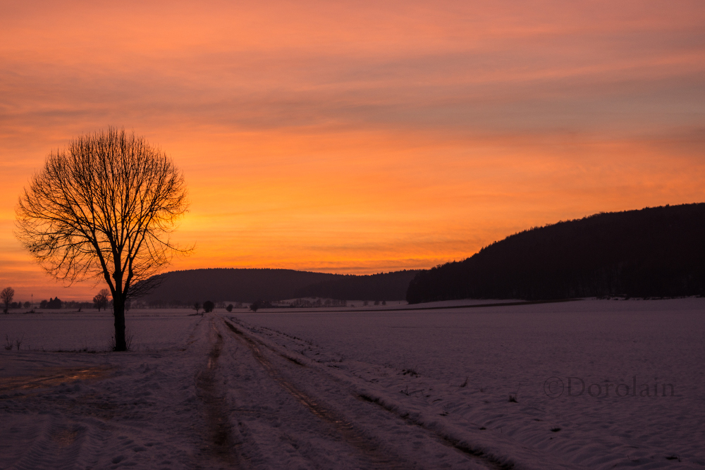Sonnenuntergang by dorolain
