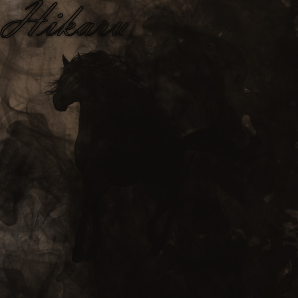 also a dark horse. by NocteBruti