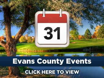 Evans County Calendar Link