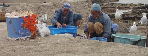 Fishmen by adrasteja