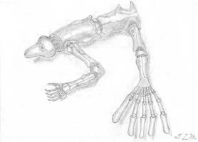 Frog-Like Robot Concept by Bladeninja76