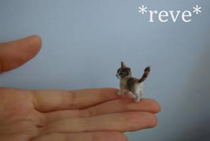 OOAK Handmade Miniature Calico Kitten Sculpture by ReveMiniatures