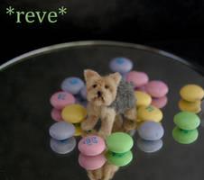 OOAK Handmade Miniature Yorkshire (Yorkie) Terrier by ReveMiniatures