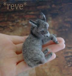 Miniature Donkey Foal Handmade Sculpture