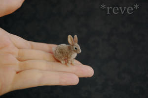 Miniature European Rabbit Handmade Sculpture by ReveMiniatures