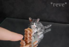 Miniature Cat playing Jenga * Handmade Sculpture * by ReveMiniatures