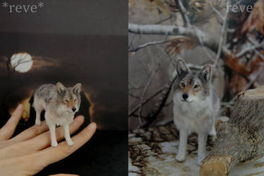 Miniature Wolf * Handmade Sculpture *