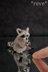 Miniature Raccoon * Handmade Sculpture *
