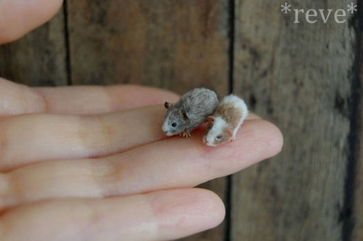 Miniature Guinea Pigs * Handmade Sculpture *