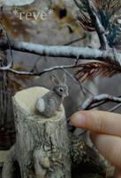 Miniature Cottontail Rabbit * Handmade Sculpture * by ReveMiniatures