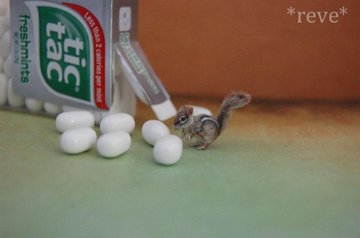 Miniature Chipmunk * Handmade Sculpture *