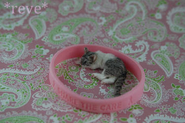 GoPink!  * Handmade Miniature Cat * by ReveMiniatures