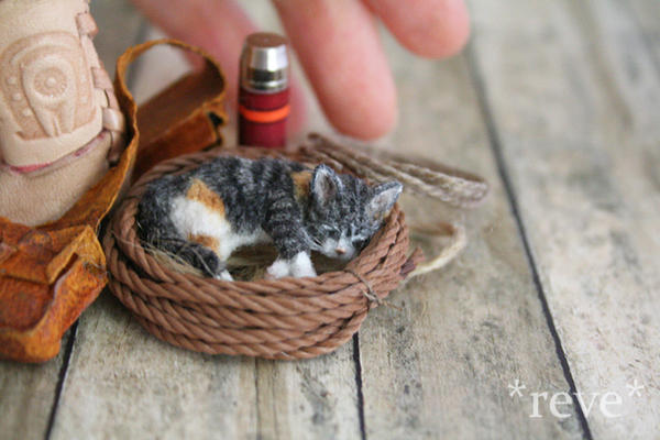 Handmade Miniature Calico Kitten Sleeping by ReveMiniatures