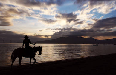 The Horseman's Shillouette