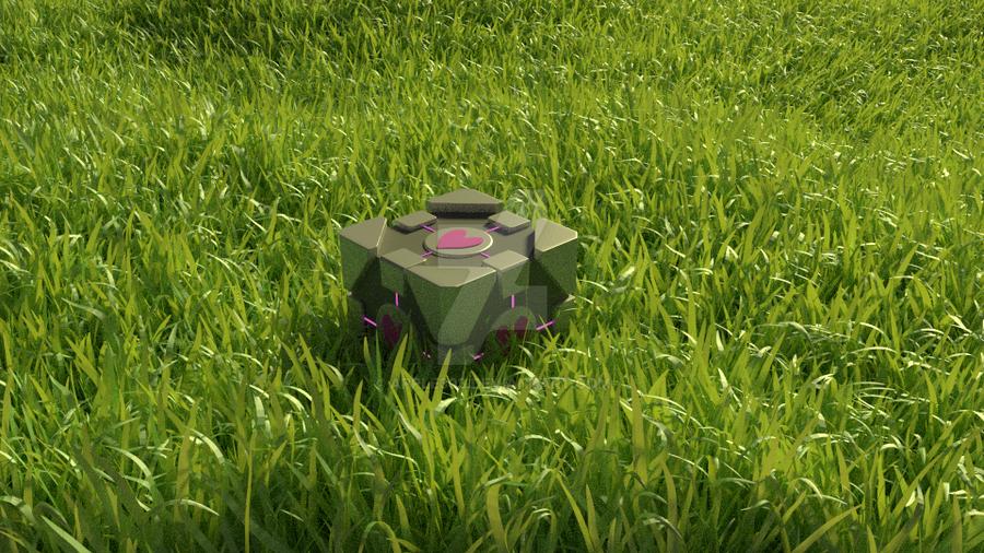 Companion Cube in a Grassy Field